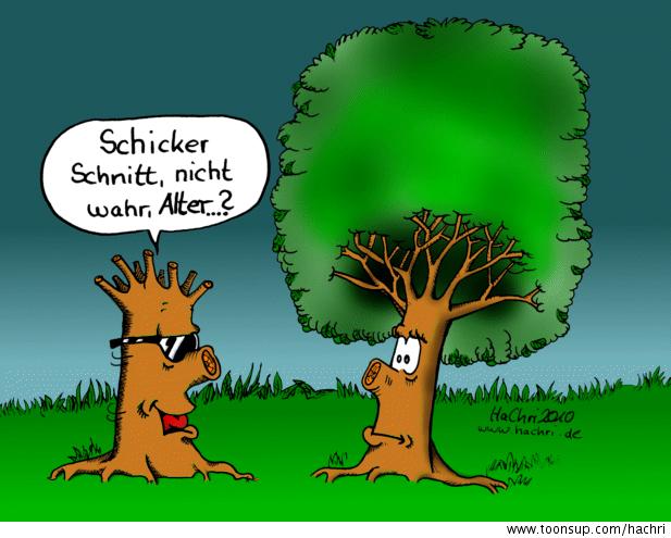 Obst wein und gartenbauverein gr tzingen e v termine - Baum comic bilder ...